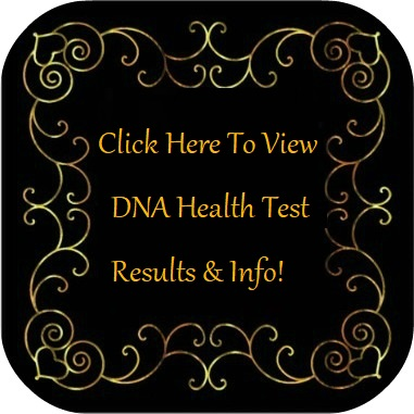 View DNA Health Test Results